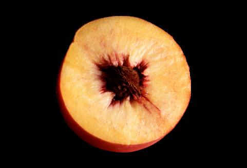 Peach Halved