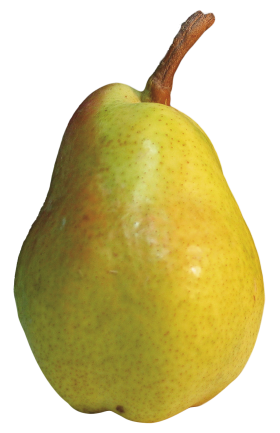 Pear Fruit Green
