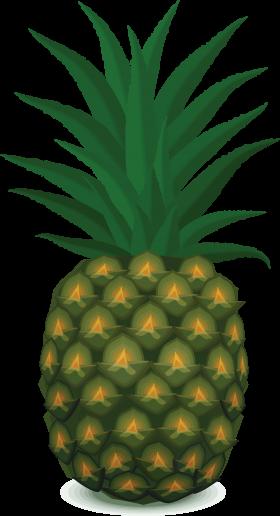 Pinapple Clipart