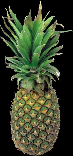 Pinapple Slices