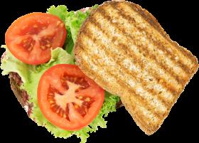 Sandwhich Toast Grilled