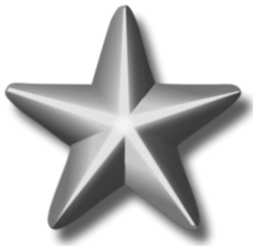 Service Silver Star