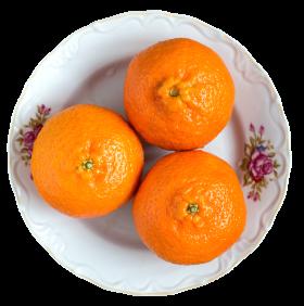 Tangerines on Plate