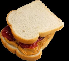 Toast Salmi Mustard