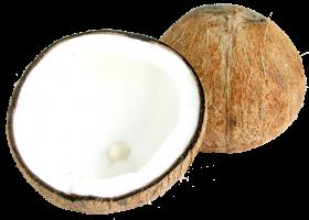 Two Half Coconuts