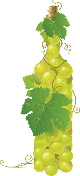 Winebottle out of Grapes