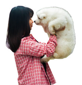 Woman Playing With A Puppy Dog