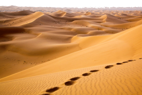 Free Transparent Desert Png Images Download Purepng