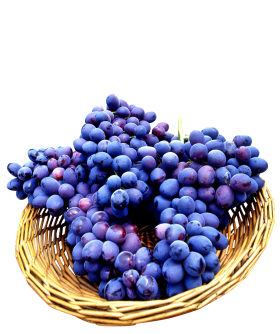Seedless Grapes in basket