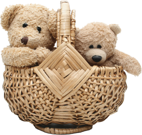 Two Teddy Bear In Basket