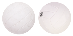 Two Volleyballs
