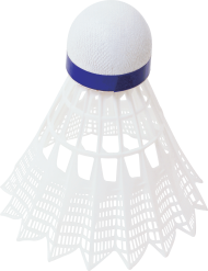 white blue shuttlecock / featherball